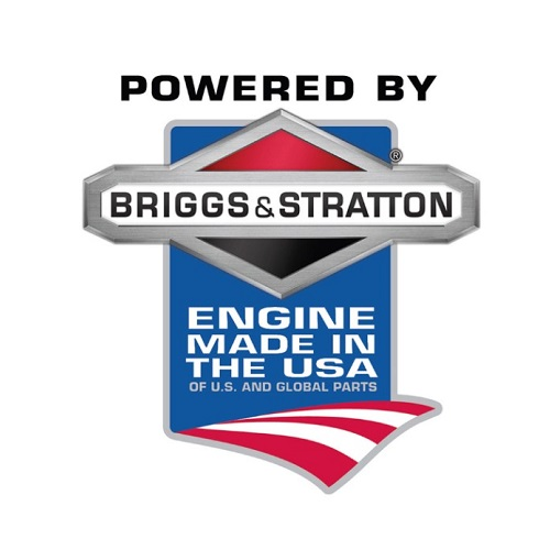 Briggs & Stratton Carburetor (596505)